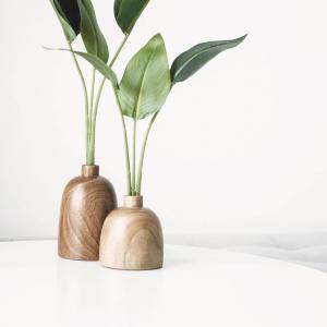Pflanzen haben die Eigenschaft Räume zum Leben zu erwecken 🌱  Was sind Eure Lieblingspflanzen für Zuhause? Schreibt es uns in die Kommentare 👇🏼