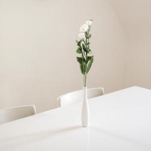 just simplicity 🌾 